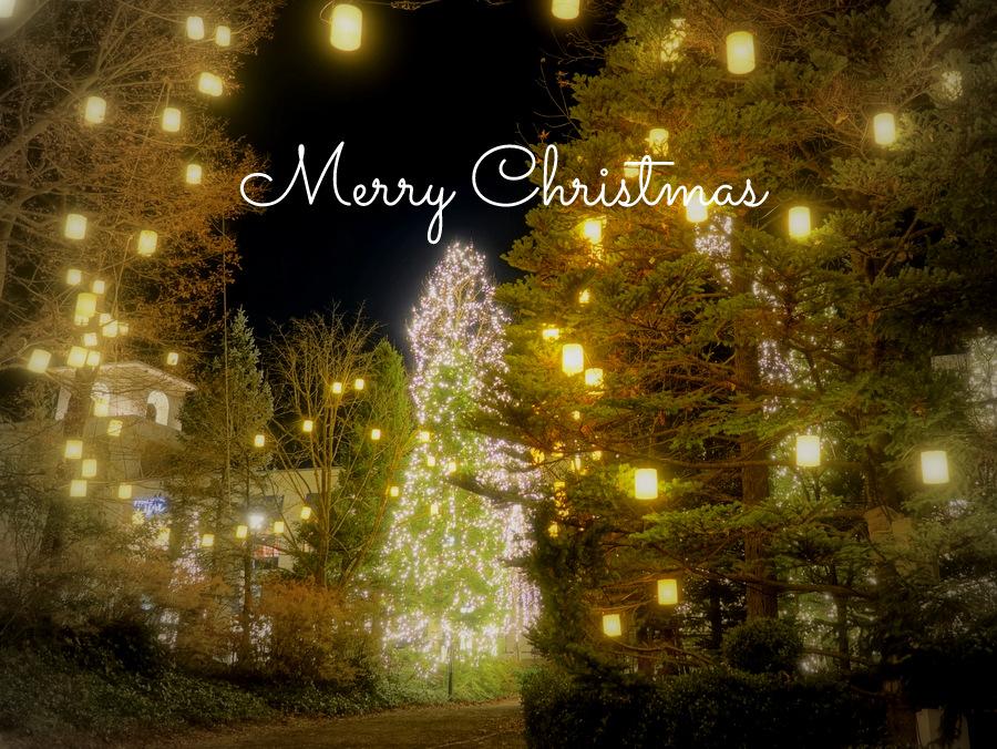 クリスマスイブによせて・・・...