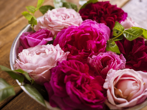 濃いピンクや薄いピンクのバラの花束