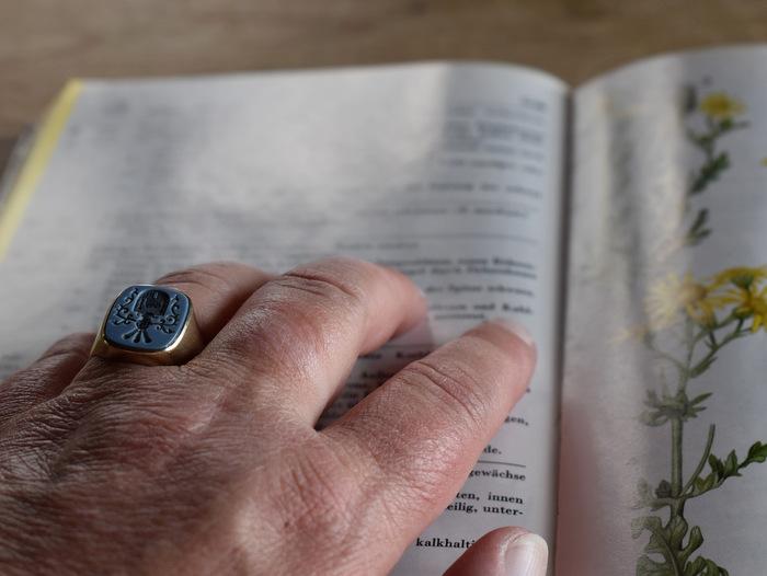 印台の形の指輪をはめた男性の手